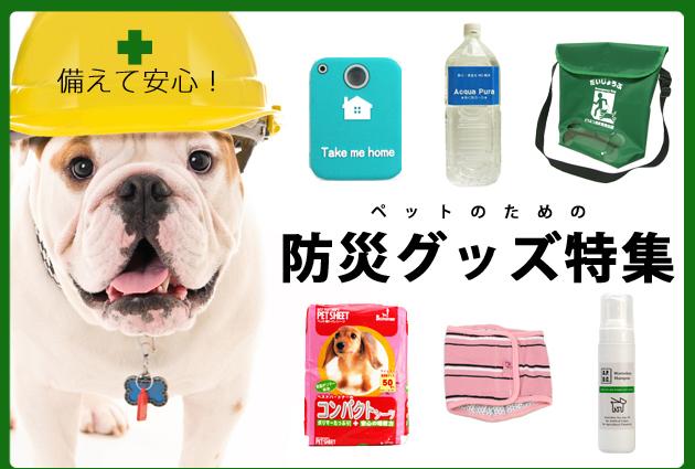 ペットのための防災グッズ特集