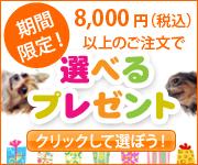 選べるプレゼント 8,000円以上のご注文で 期間限定!